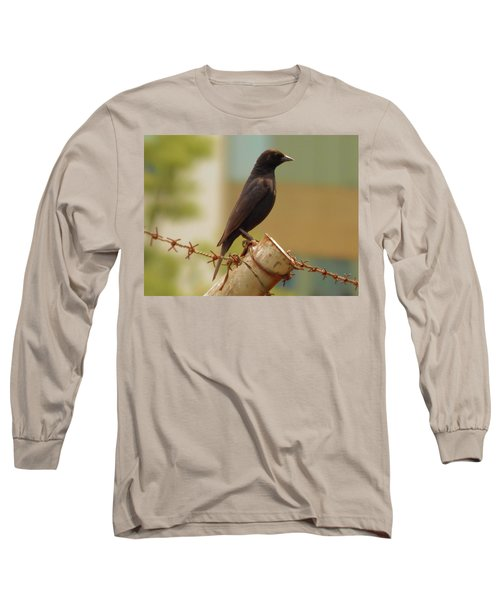 Loneliness Bird Long Sleeve T-Shirt