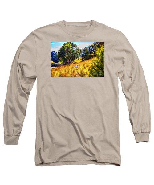 Lost Lamb Long Sleeve T-Shirt by Rick Bragan