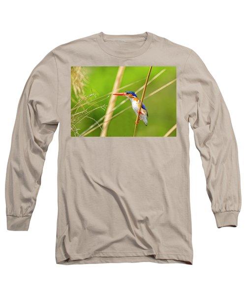 Malachite Kingfisher Long Sleeve T-Shirt