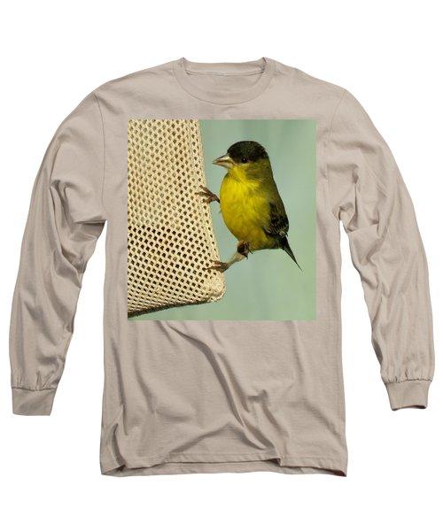 Male Goldfinch On Sock Feeder Long Sleeve T-Shirt