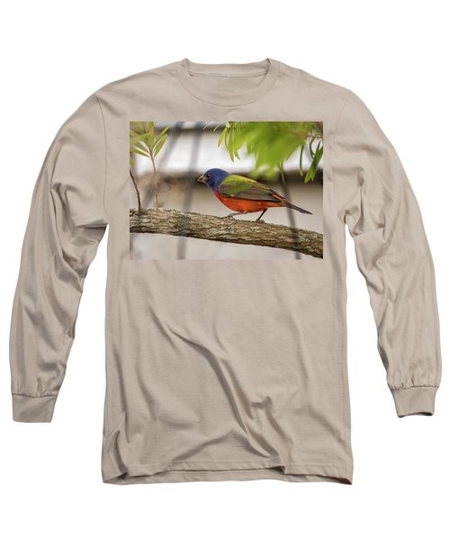 Male Painted Bunting Long Sleeve T-Shirt