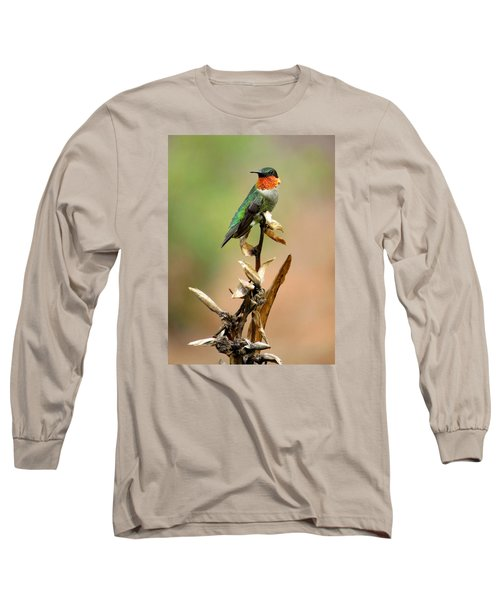 Long Sleeve T-Shirt featuring the photograph Male Ruby Throat Hummingbird by Phyllis Beiser