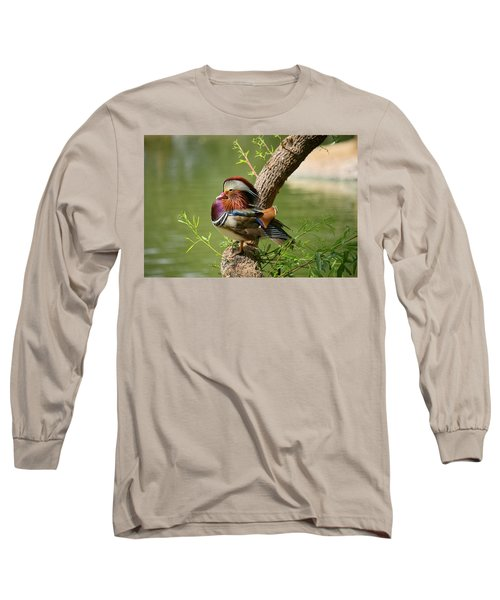 Mandarin Duck On Tree Long Sleeve T-Shirt