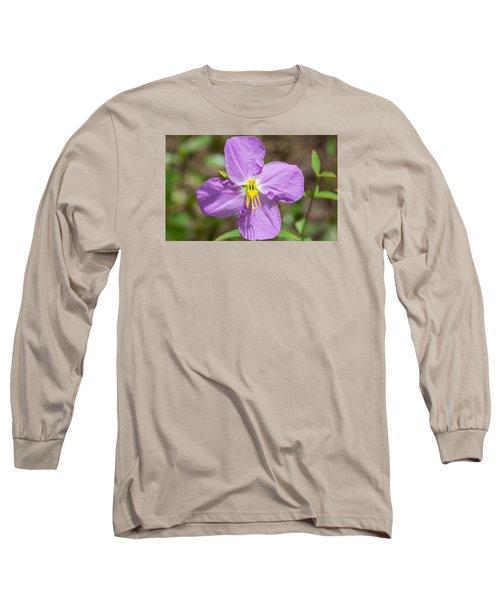 Meadow Beauty Long Sleeve T-Shirt by Kenneth Albin