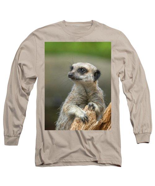 Meerkat Model Long Sleeve T-Shirt