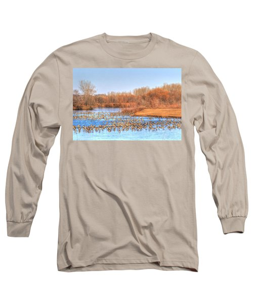 Migration Break On Ice Long Sleeve T-Shirt