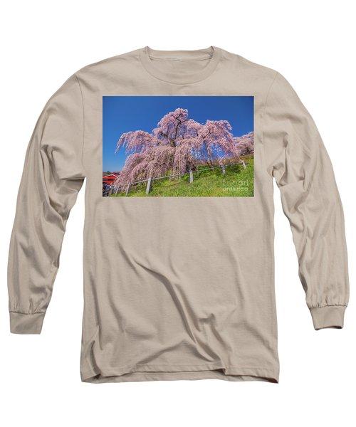 Long Sleeve T-Shirt featuring the photograph Miharu Takizakura Weeping Cherry0565 by Tatsuya Atarashi