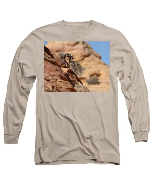 Long Sleeve T-Shirt featuring the photograph Miyagi by David Andersen
