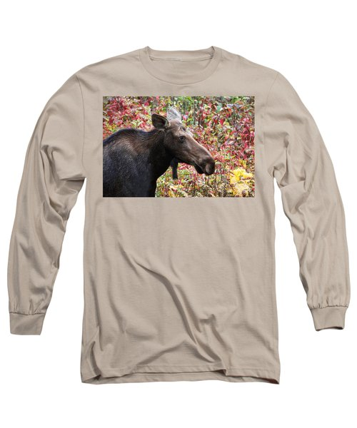 Long Sleeve T-Shirt featuring the photograph Moose And Fall Leaves by Peggy Collins