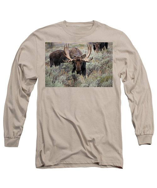 Moose In The Sage Long Sleeve T-Shirt