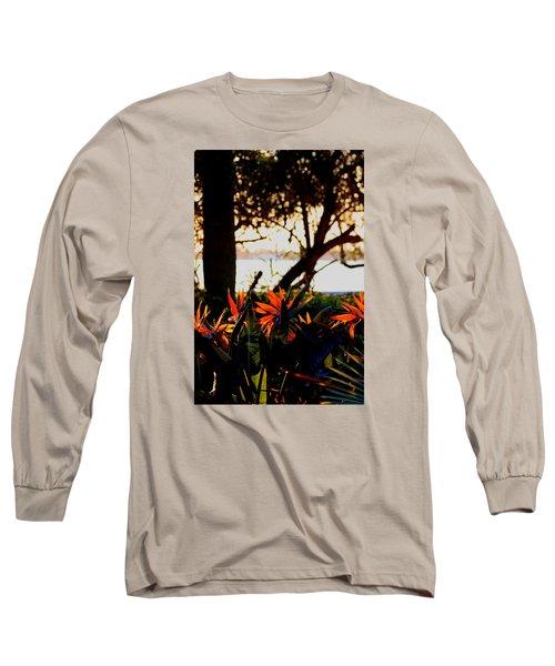 Morning In Florida Long Sleeve T-Shirt by Diane Merkle