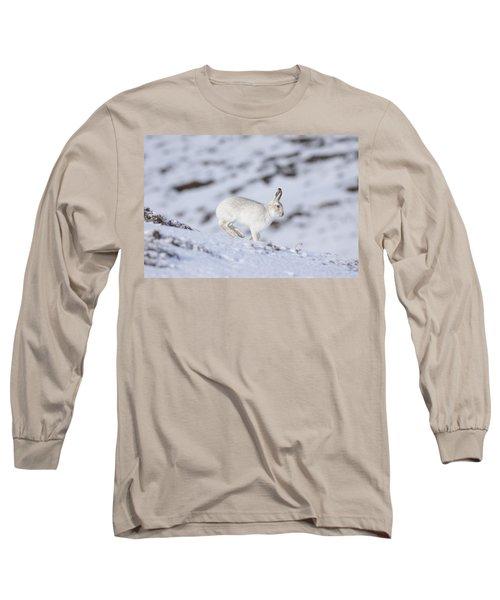 Mountain Hare - Scottish Highlands  #12 Long Sleeve T-Shirt