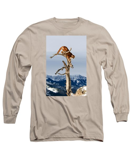 Mountain Lion In Tree Long Sleeve T-Shirt