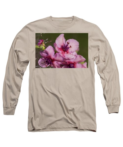 Mullein In The Mist Long Sleeve T-Shirt
