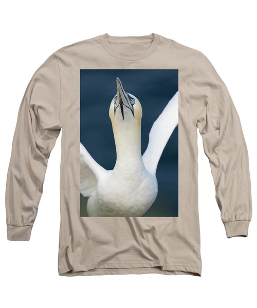 Long Sleeve T-Shirt featuring the photograph Northern Gannet Stretching Its Wings by Karen Van Der Zijden