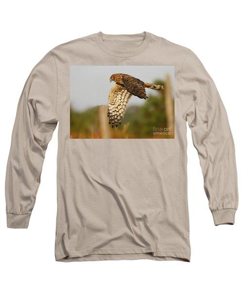 Northern Harrier Flight Long Sleeve T-Shirt by Myrna Bradshaw