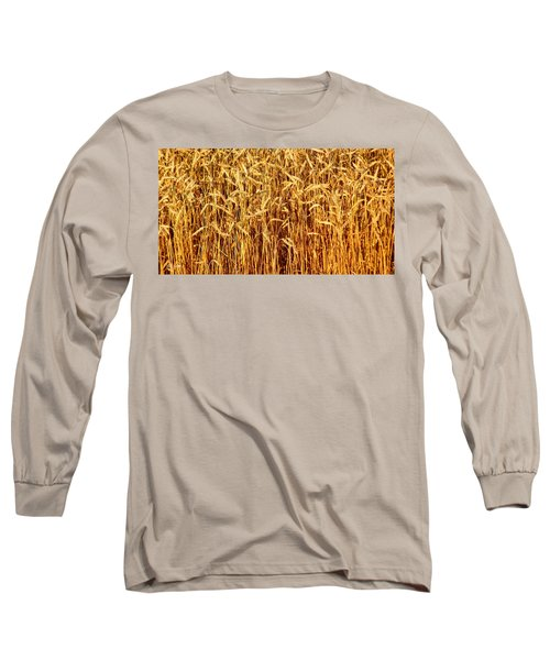 Not Just In Kansas Long Sleeve T-Shirt