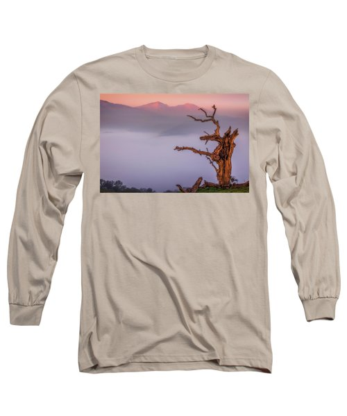 Old Oak And Mt. Diablo On A Foggy Morning Long Sleeve T-Shirt by Marc Crumpler