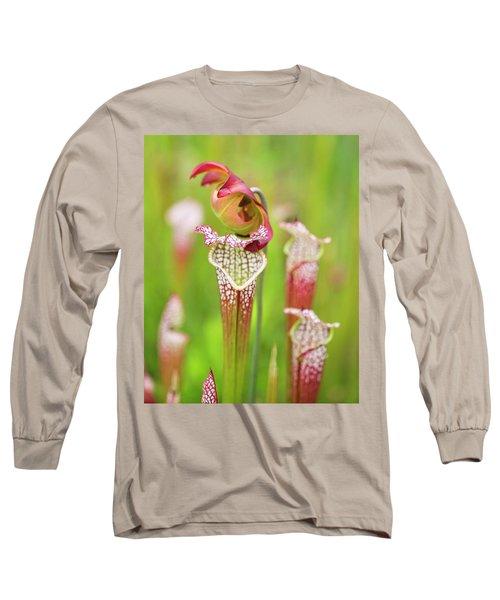 Long Sleeve T-Shirt featuring the photograph Open Pitcher by Alan Raasch