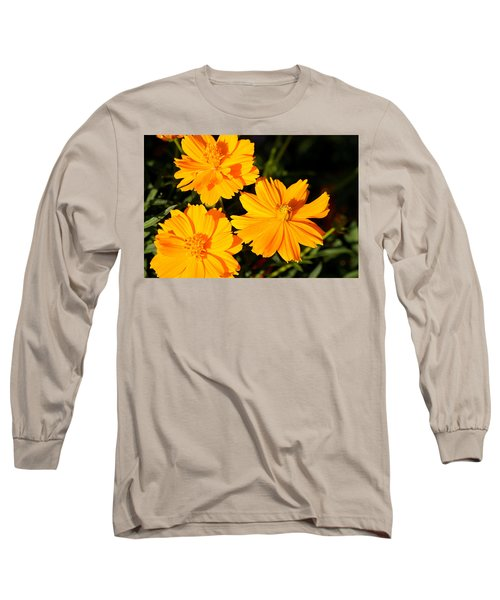 Long Sleeve T-Shirt featuring the photograph Cosmos Trio by Sheila Brown