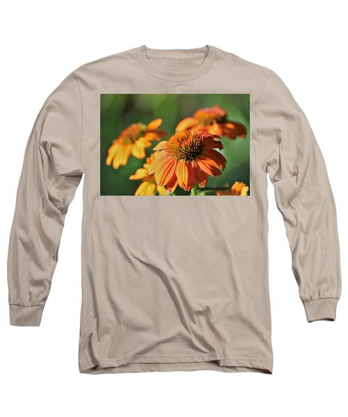 Orange Cone Flowers In Morning Light Long Sleeve T-Shirt