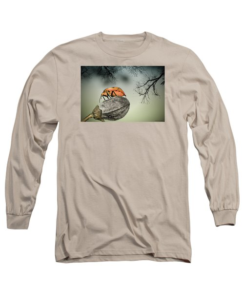 Long Sleeve T-Shirt featuring the photograph Orange Stink Bug 001 by Kevin Chippindall
