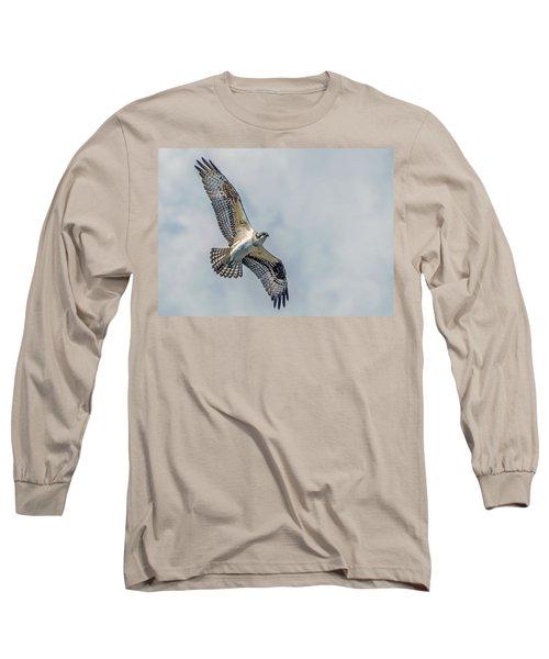 Osprey In Flight Long Sleeve T-Shirt
