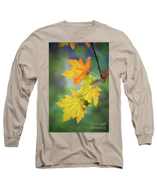Painted Autumn Leaves Long Sleeve T-Shirt