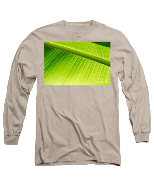 Palm Leaf Background Long Sleeve T-Shirt by Yurix Sardinelly
