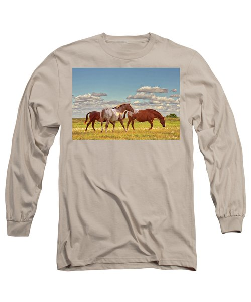 Party Of Three Long Sleeve T-Shirt