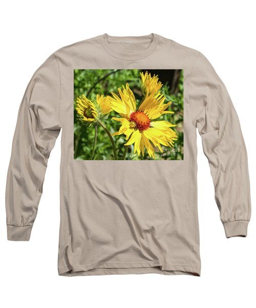 Patient Spider Long Sleeve T-Shirt