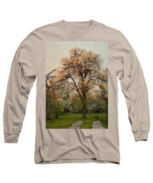 Pear Spring Sunrise Long Sleeve T-Shirt by Henryk Gorecki
