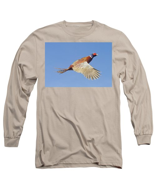 Pheasant Wings Long Sleeve T-Shirt