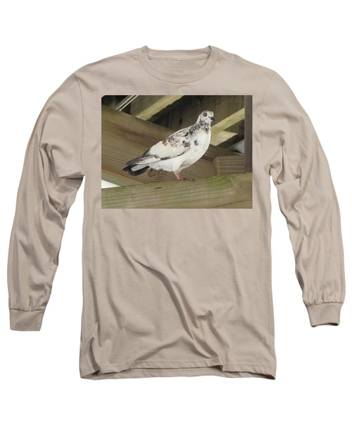 Pigeon Under Daytona Beach Pier  Long Sleeve T-Shirt