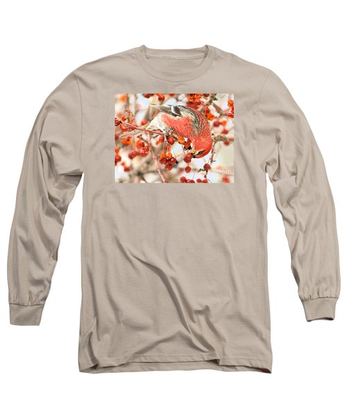 Pine Grosbeak Long Sleeve T-Shirt by Debbie Stahre