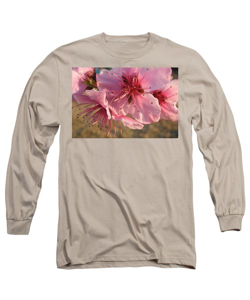 Pink Blossoms Long Sleeve T-Shirt by Barbara Yearty