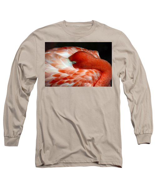 Pink Flamingo Long Sleeve T-Shirt by Inspirational Photo Creations Audrey Woods