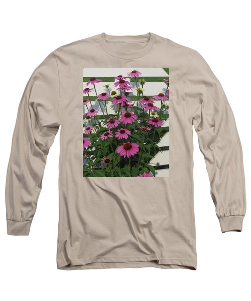 Pink On The Fence Long Sleeve T-Shirt by Jeanette Oberholtzer