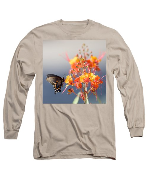 Pipevine Swallowtail Long Sleeve T-Shirt by Dan McManus