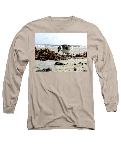 Plover On Daytona Beach Long Sleeve T-Shirt by Chris Mercer