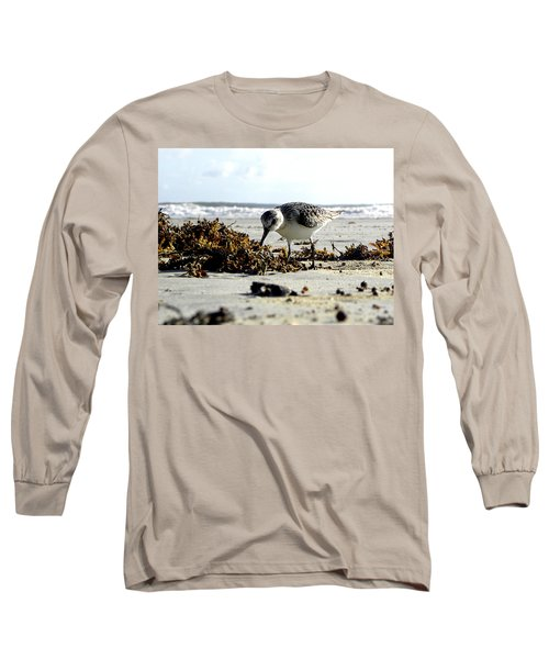 Plover On Daytona Beach Long Sleeve T-Shirt
