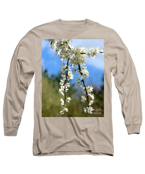 Plum Tree Blossoms Long Sleeve T-Shirt