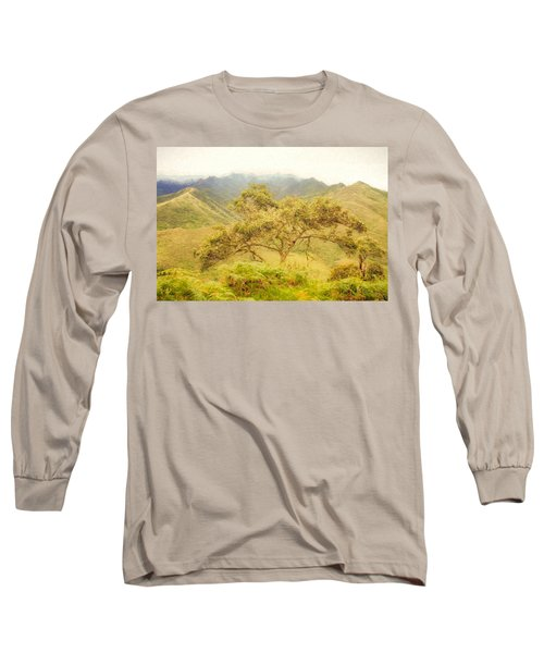Podocarpus Tree Long Sleeve T-Shirt