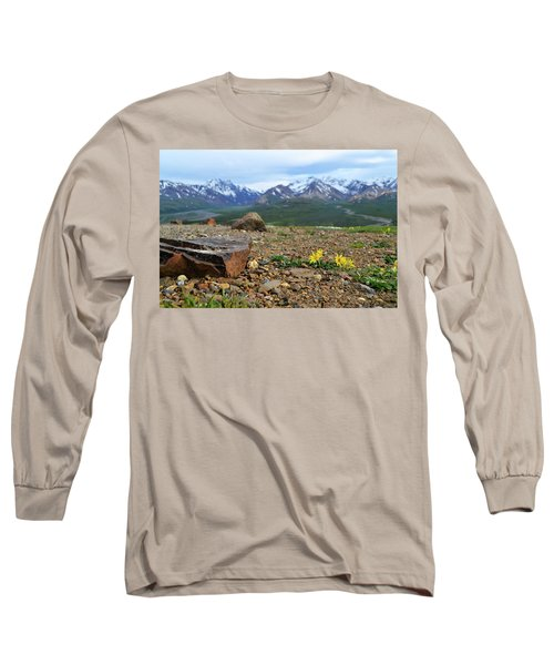 Long Sleeve T-Shirt featuring the photograph Polychrome Pass, Denali by Zawhaus Photography