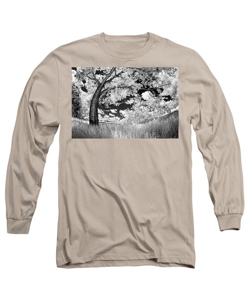 Long Sleeve T-Shirt featuring the photograph Poplar On The Edge Of A Field by Dan Jurak
