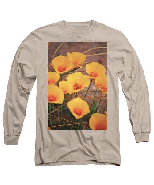 Poppies On Mount Lemmon Long Sleeve T-Shirt