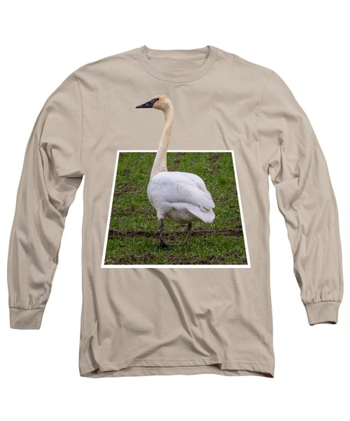 Portrait Of A Swan Out Of Frame Long Sleeve T-Shirt
