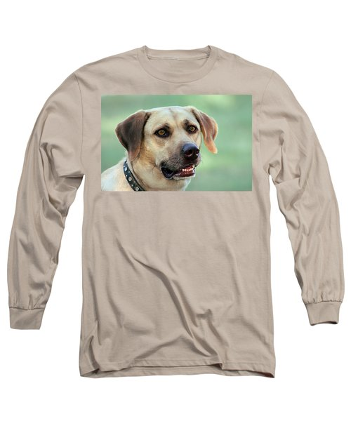 Portrait Of A Yellow Labrador Retriever Long Sleeve T-Shirt