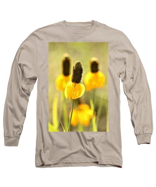 Prairie Coneflower In Morning Light Long Sleeve T-Shirt