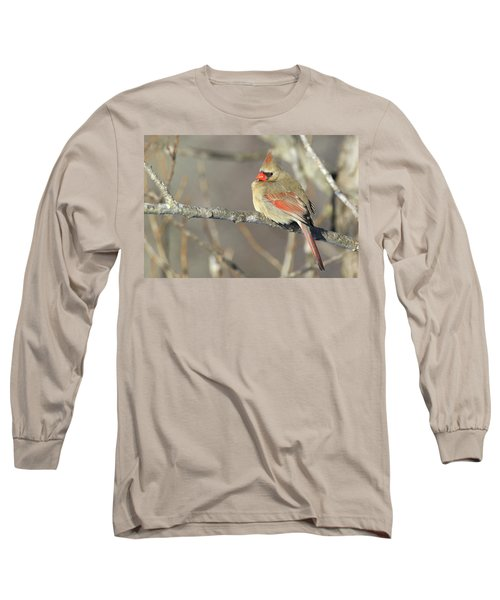 Pretty Female Cardinal Long Sleeve T-Shirt